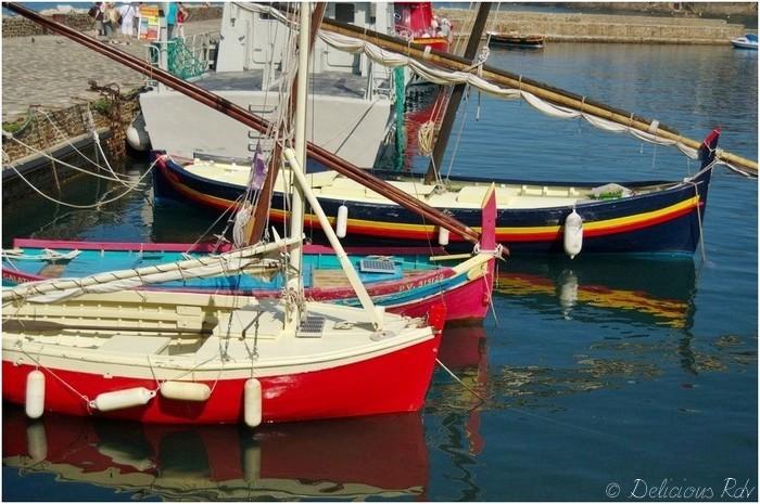collioure-05811