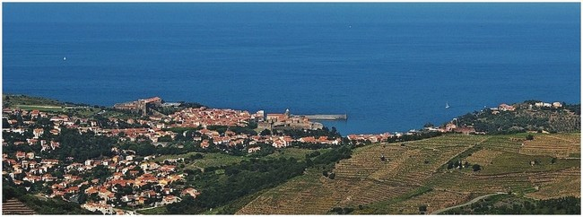 collioure-030