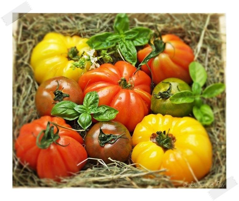 tomates-myrtilles-01911