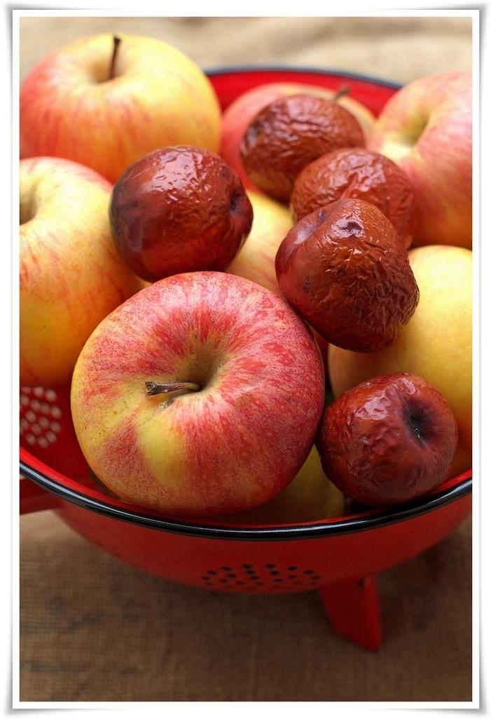 Pommes-et-Jujubes-12