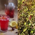 Tisane Glacée Fleurie & Fruitée {Battle Food #20}