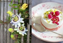 Cheesecake CFG Image à la Une