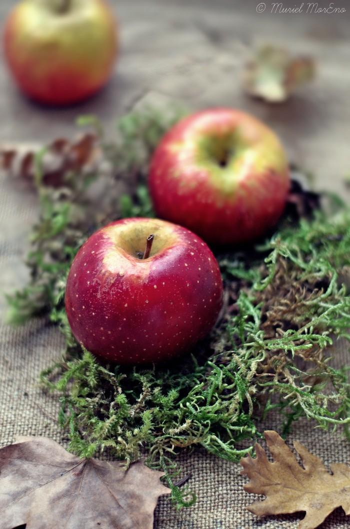 Pommes Mousse